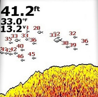 Fish ID Function from Lowrance Fish Finder | Fish Finders