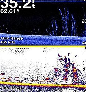 echomap-chirp-7-split-sonar-view